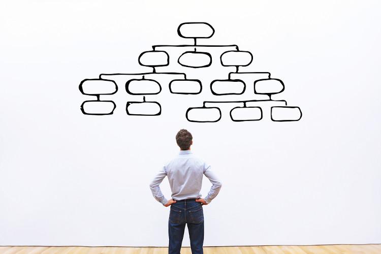 Esquematize o estudo usando mapa mental (ideia central e suas ramificações) ou mapa conceitual (conceitos interligados numa rede).