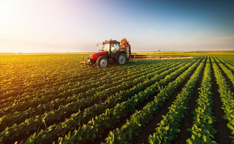 A mecanização do campo e o uso de agrotóxicos devem ser conhecidos pelos candidatos.