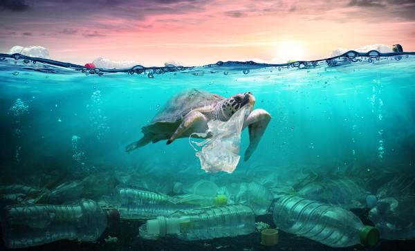 A poluição no meio ambiente é tema comum no Enem.