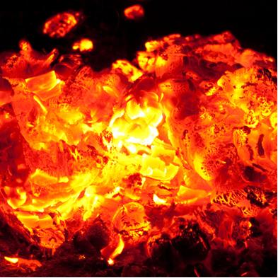 Toda reação de combustão libera calor, logo, é exotérmica