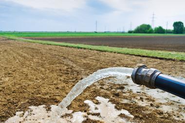 O reúso da água na agricultura contribui para a preservação desse recurso natural