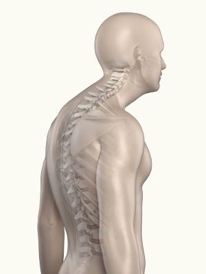 A hipercifose caracteriza-se por um aumento na curvatura na região torácica