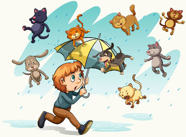 Run to home because It's raining cats and dogs