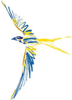 É necessário ser um leitor crítico para ser um escritor autônomo, portanto, para ser livre como os pássaros, é preciso aprender a ler criticamente