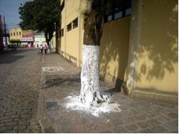 As pinturas de caiação feitas em árvores, paredes e em outros lugares, são realizadas hidratando-se a cal, que é um óxido cujo nome oficial é óxido de