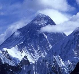 O monte Everest se encontra a uma altitude de 8.848 metros, portanto não encontramos vegetação neste local.
