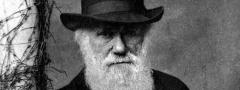 Charles Darwin: naturalista que muito contribuiu para o estudo da evolução.