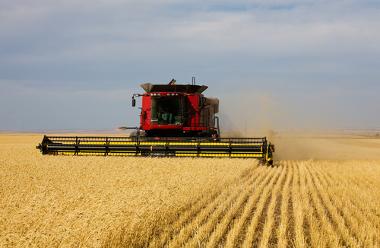 O agronegócio aumentou a produtividade do campo