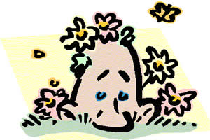 O pólen das flores provoca alergias.