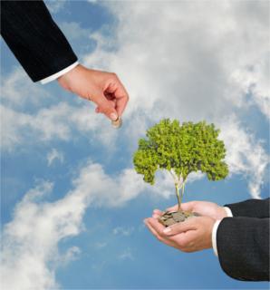 Um país que retira gás carbônico da atmosfera, como por meio de um reflorestamento, ganha créditos de carbono para vender para outros países