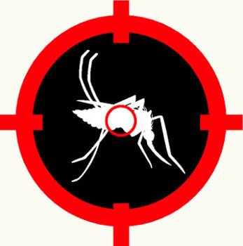 Para diminuir os casos de dengue devemos diminuir os criadouros do mosquito