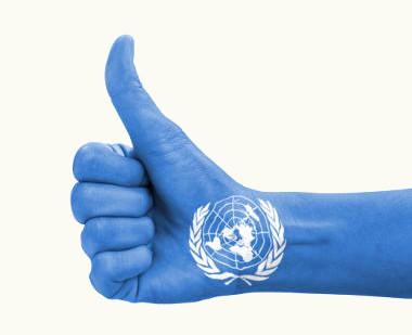 Os Objetivos de Desenvolvimento do Milênio foram elaborados pela Organização das Nações Unidas.