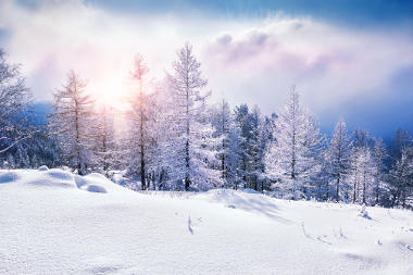 ae84baefb6e23 Inverno. Características climáticas do inverno - Alunos Online