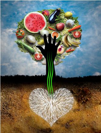 As plantas retiram sua energia do sol, do solo e do ar, enquanto o homem retira a energia das plantas