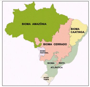 Mapa produzido pelo IBGE com os biomas brasileiros.¹