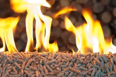 Produção de energia a partir da queima da biomassa