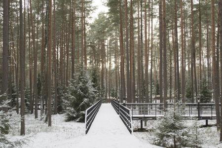 O nome do massacre faz referência à floresta de Katyn, local onde muitos mortos foram enterrados em valas comuns