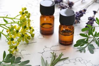 Você sabe como o óleo essencial das plantas (como a lavanda ao fundo da imagem), que contém os compostos aromáticos, é extraído?
