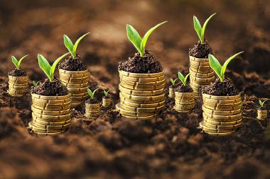 A economia verde visa à promoção do crescimento em função da preservação ambiental